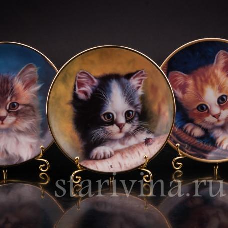 Декоративные фарфоровые тарелки Портреты котят, Schirnding, Германия, 1995 г.